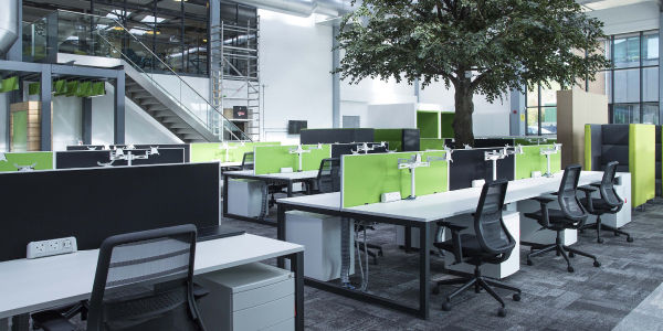 A commercial interior space designed in green and white decor with a tree in the middle suggested by architecture firm.