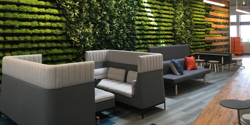 Garden Wall In Office Interior - Modern Waiting Hall Arrangemnt.